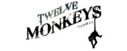 Twelve Mokeys